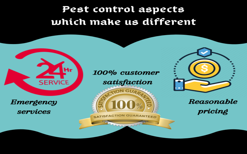 Pest control aspects which make Major Pest Control Sydney different