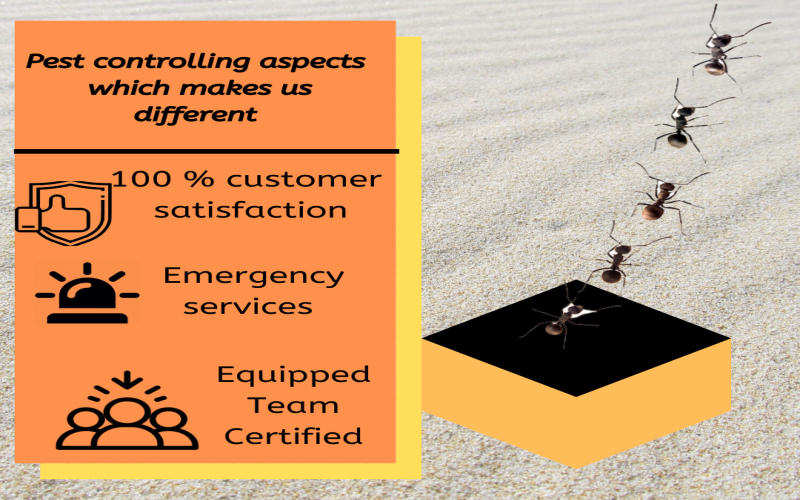 Pest controlling aspects which makes Major Pest Control Melbourne different