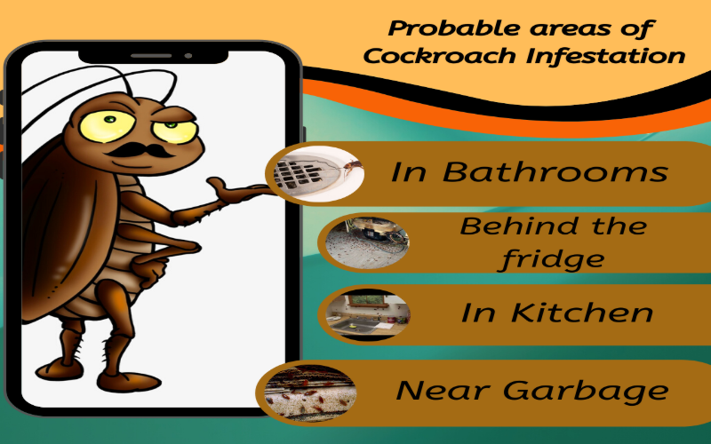 Probable areas of Cockroach Infestation